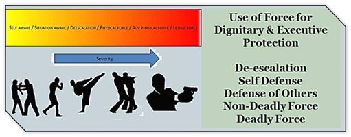 Protective Agent Use of Force Program